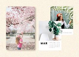 봄 사진전