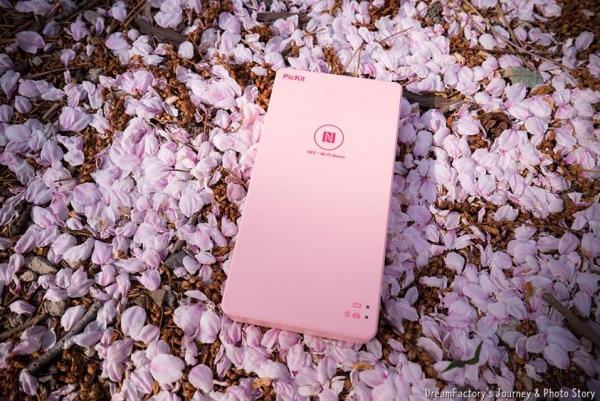 피킷 핑크와 블링블링 봄나들이~!!