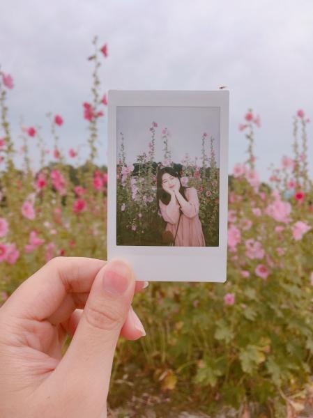 꽃길에서 인생사진